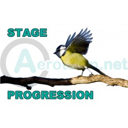 Stage - Progression